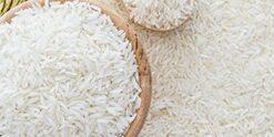 Rice-Pasta-Pulses